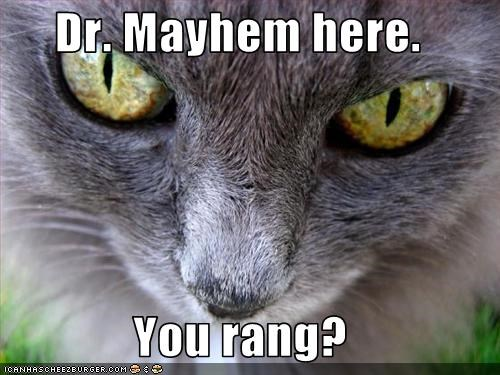Dr. Mayhem here.  You rang?