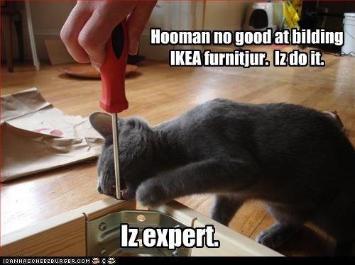 Hooman no good at bilding IKEA furnitjur.  Iz do it.