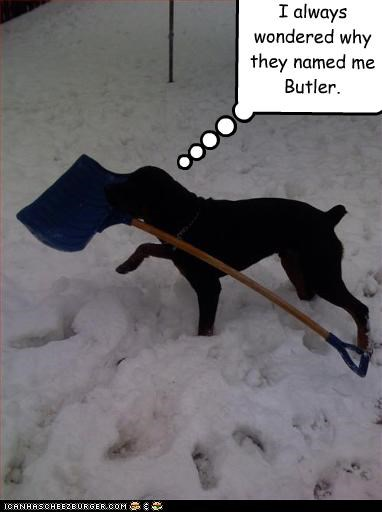 I always wondered why they named me Butler.