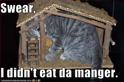 Swear,  I didn't eat da manger.