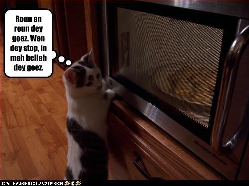 belly,fud,microwave,nom nom nom,want