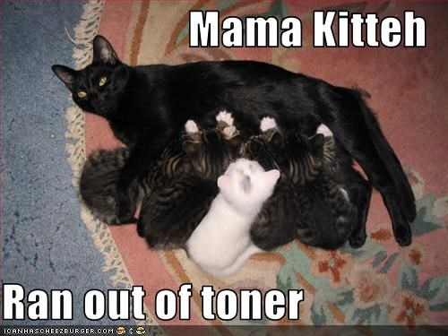 Mama Kitteh  Ran out of toner