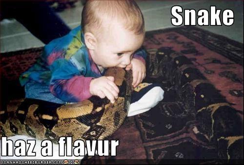 Snake  haz a flavur