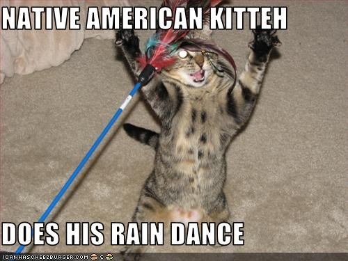 NATIVE AMERICAN KITTEH DOES HIS RAIN DANCE