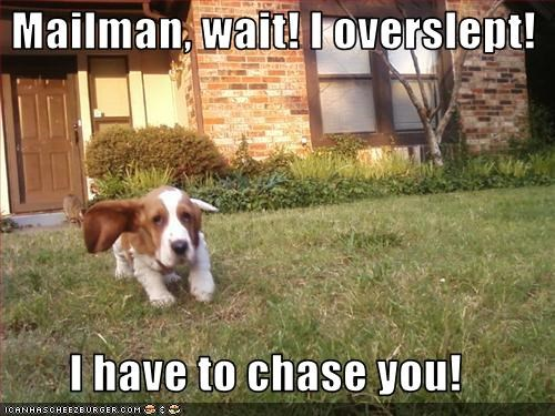 Mailman, wait! I overslept!  I have to chase you!