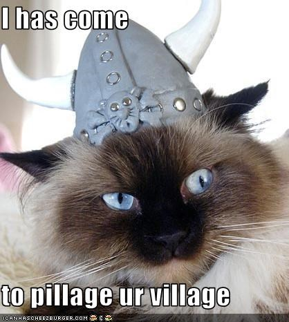 I has come   to pillage ur village