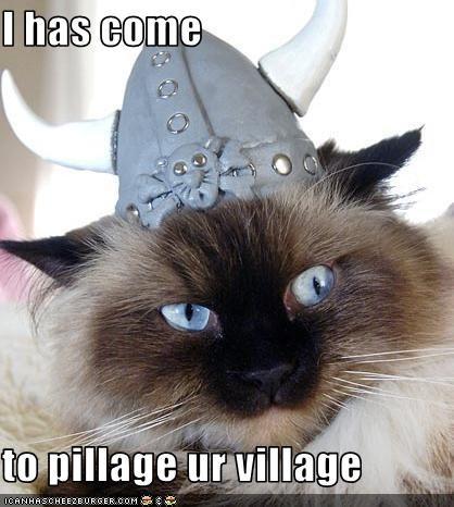 attacking,costume,threats,viking