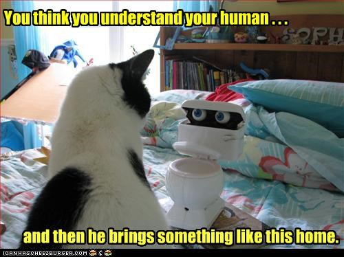 You think you understand your human . . .