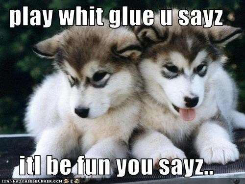 glue,puppies,siberian husky,stuck,twins