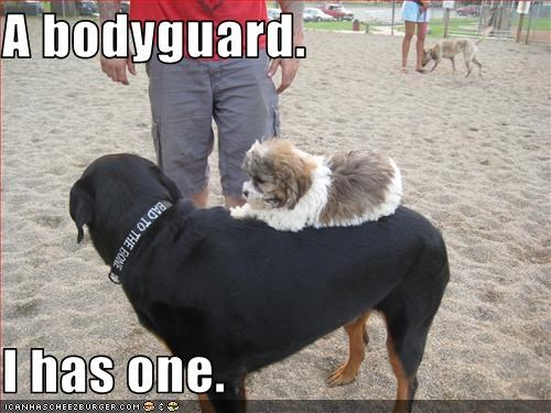 A bodyguard.  I has one.