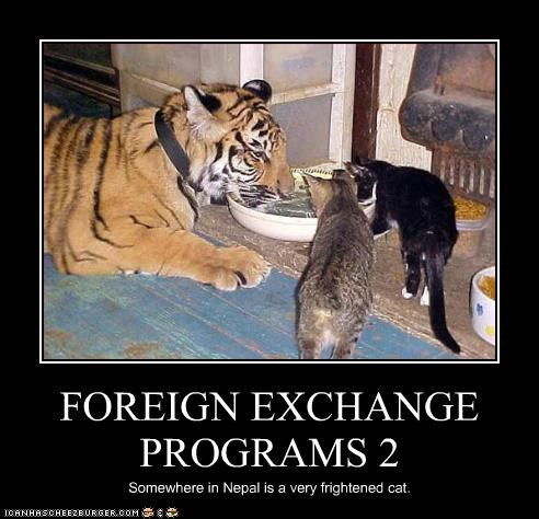 FOREIGN EXCHANGE PROGRAMS 2