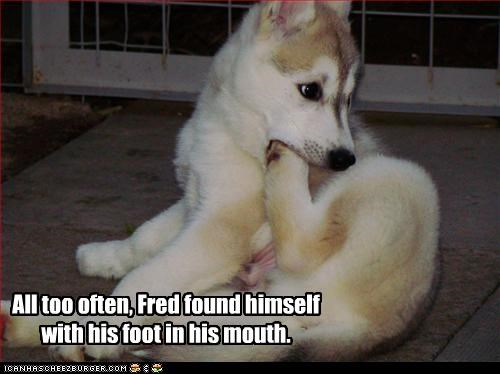 All too often, Fred found himself with his foot in his mouth.