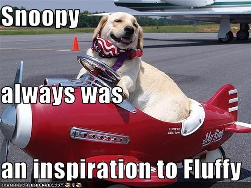 Snoopy always was an inspiration to Fluffy