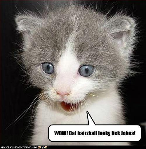 WOW! Dat hairzball looky liek Jebus!