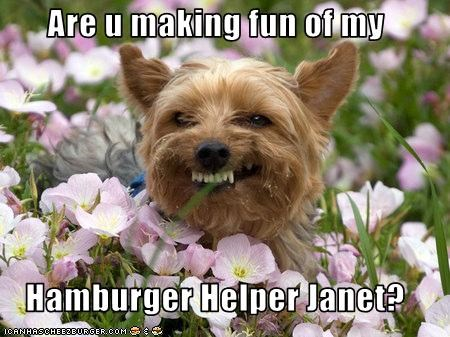 Are u making fun of my  Hamburger Helper Janet?