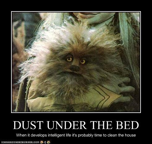 DUST UNDER THE BED