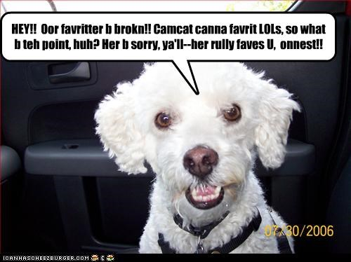HEY!!  Oor favritter b brokn!! Camcat canna favrit LOLs, so what b teh point, huh? Her b sorry, ya'll--her rully faves U,  onnest!!