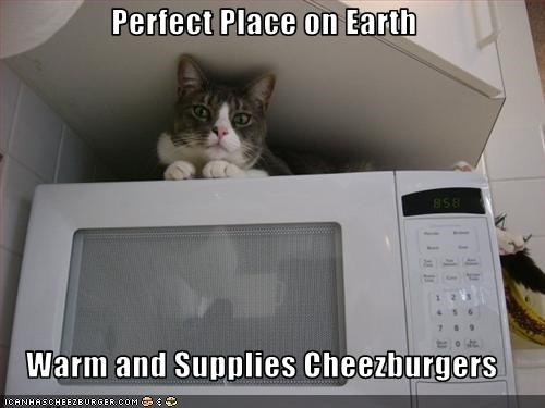 Perfect Place on Earth  Warm and Supplies Cheezburgers