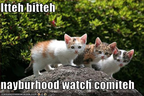 Itteh bitteh  nayburhood watch comiteh