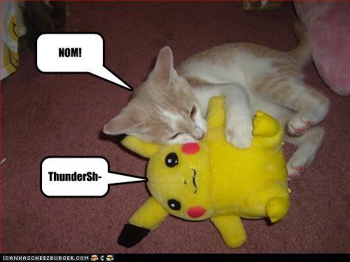 ThunderSh-