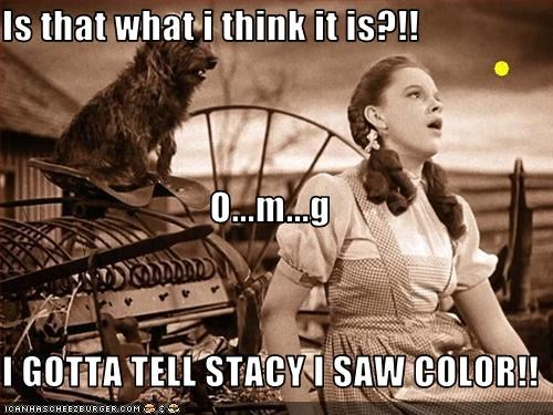 Is that what i think it is?!! O...m...g I GOTTA TELL STACY I SAW COLOR!!