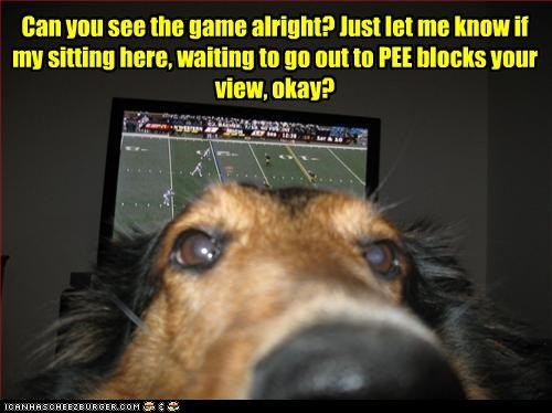 Can you see the game alright? Just let me know if my sitting here, waiting to go out to PEE blocks your view, okay?