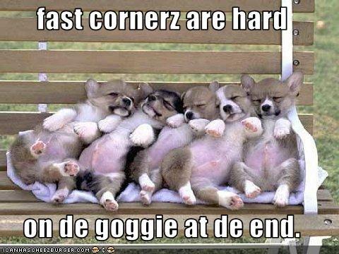 fast cornerz are hard  on de goggie at de end.