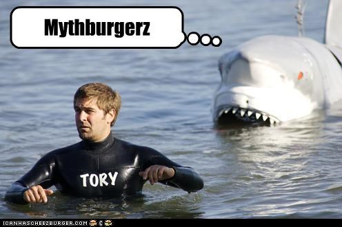 cheezburger,mythbusters,shark,tory belleci