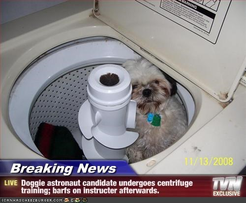 Breaking News - Doggie astronaut candidate undergoes centrifuge training; barfs on instructer afterwards.