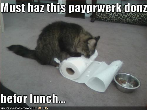 Must haz this payprwerk donz  befor lunch...