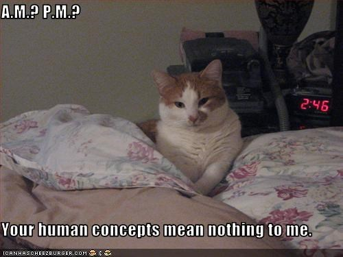 A.M.? P.M.?  Your human concepts mean nothing to me.