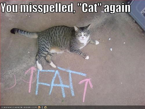 "You misspelled, ""Cat"" again"