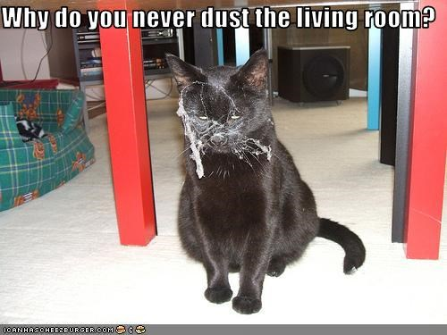 Why do you never dust the living room?