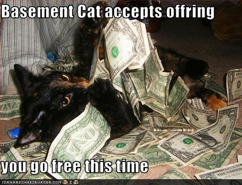 Basement Cat accepts offring  you go free this time