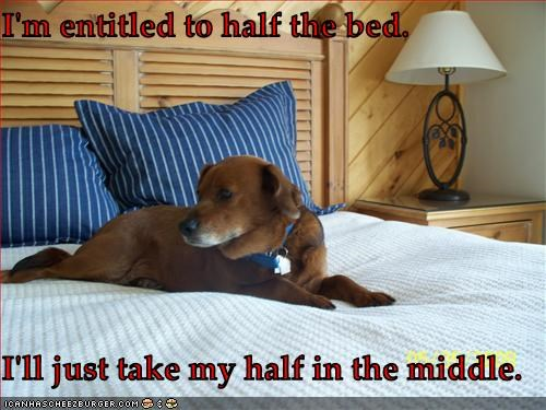 I'm entitled to half the bed.  I'll just take my half in the middle.