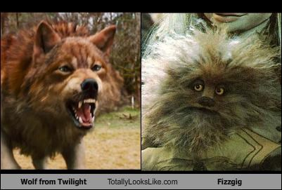 Wolf from Twilight Totally Looks Like Fizzgig