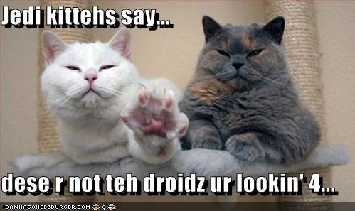 Jedi kittehs say...  dese r not teh droidz ur lookin' 4...