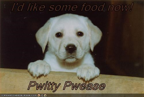 I'd like some food now!          Pwitty Pwease