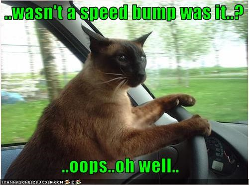 ..wasn't a speed bump was it..?  ..oops..oh well..