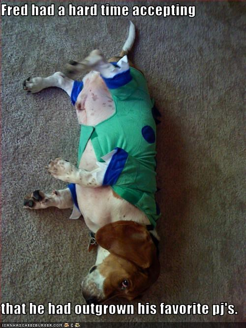 Fred had a hard time accepting   that he had outgrown his favorite pj's.