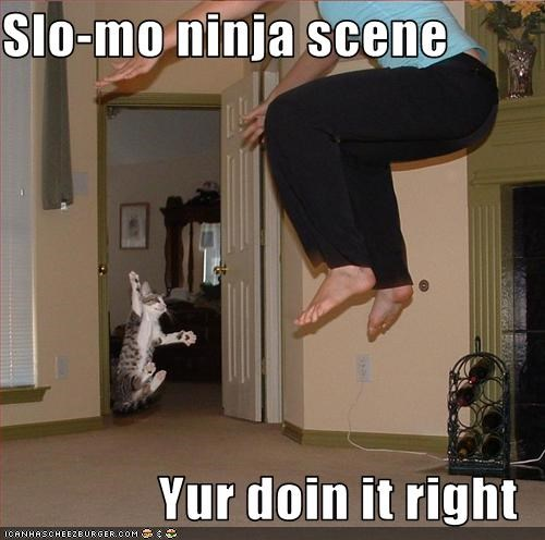 Slo-mo ninja scene  Yur doin it right