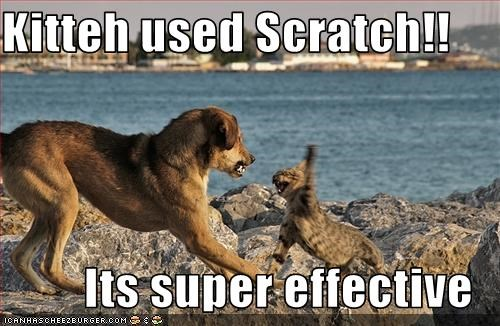 Kitteh used Scratch!!  Its super effective
