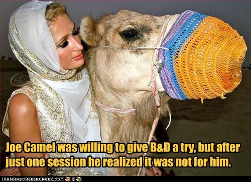 Joe Camel was willing to give B&D a try, but after just one session he realized it was not for him.