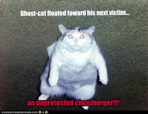 Ghost-cat floated toward his next victim...