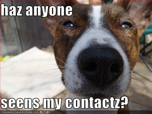 haz anyone  seens my contactz?