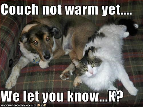Couch not warm yet....  We let you know...K?
