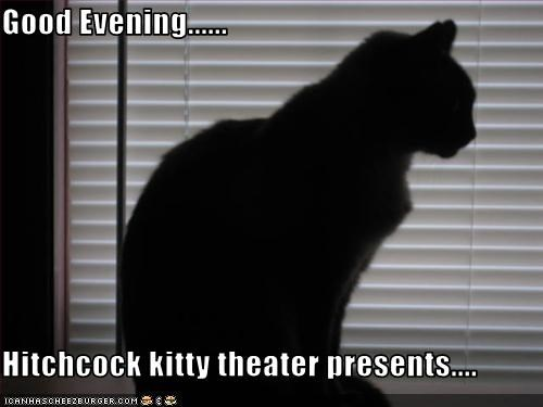Good Evening......  Hitchcock kitty theater presents....