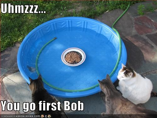 Uhmzzz...  You go first Bob