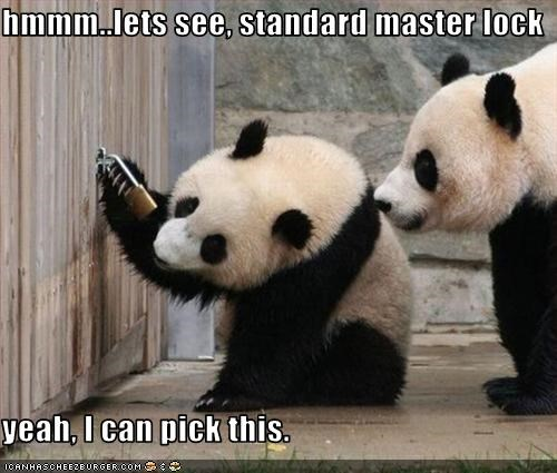hmmm..lets see, standard master lock  yeah, I can pick this.