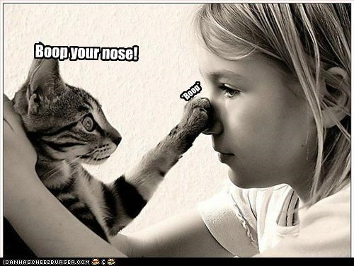 Boop your nose!